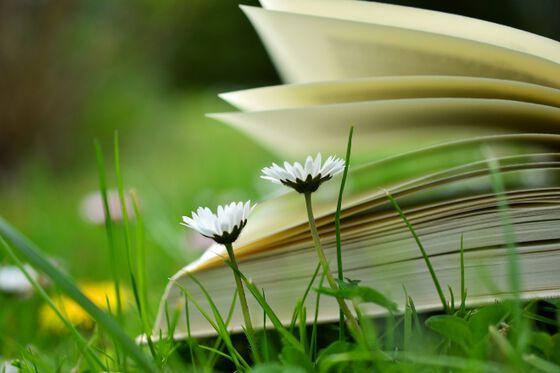 Blomster og bok